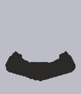 Holod_logo_push(1)